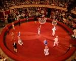 Одесский цирк